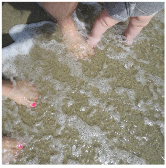 #95---Toes-in-ocean