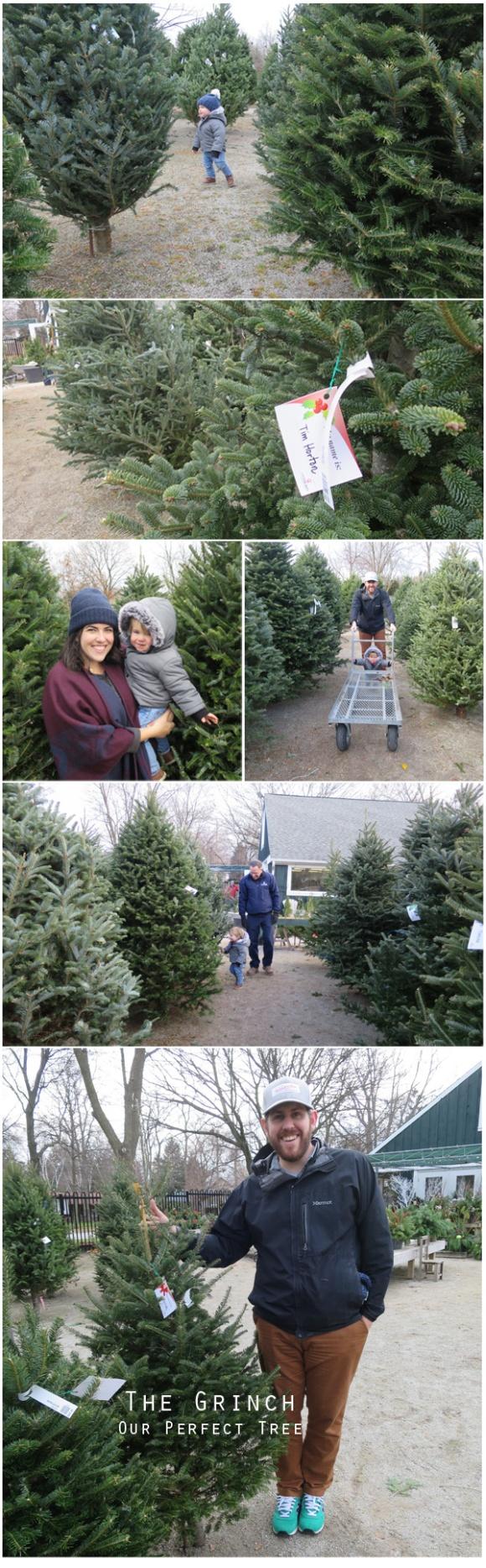 #21---Christmas-tree